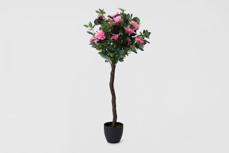 Искусственное дерево Роза Hoff