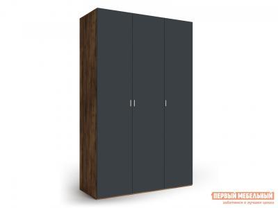 Распашной шкаф  3-х дверный Вега Бавария Таксония медовая / Антрацит, Без зеркала, топа-накладки КУРАЖ. Цвет: коричневое дерево